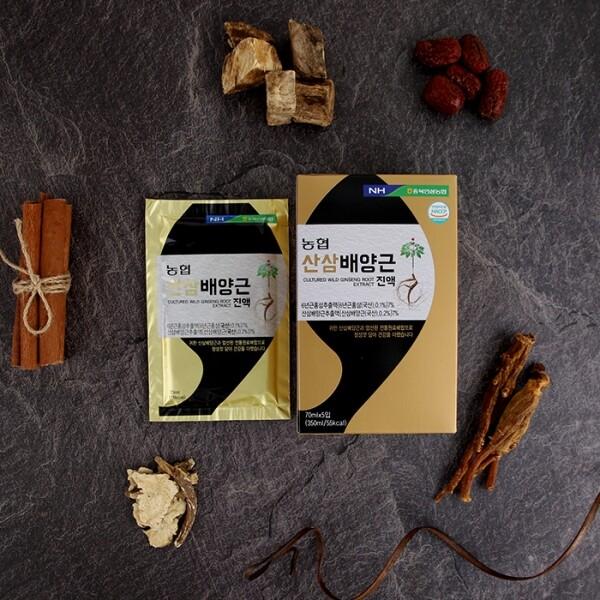 충북인삼농협 산삼배양근진액 70ml x 30포(쇼핑백 포함)