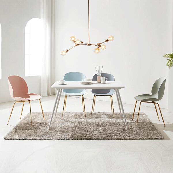 뉴튤립 인테리어 식탁의자 세트 (식탁+의자4개 셋트구성)