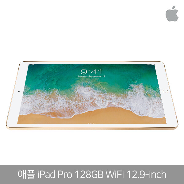 Apple 아이패드 프로 12.9형 128G WiFi A1584 (3색상/구성품: 본체,충전기,케이블)